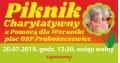 Piknik w Nowych Proboszczewicach